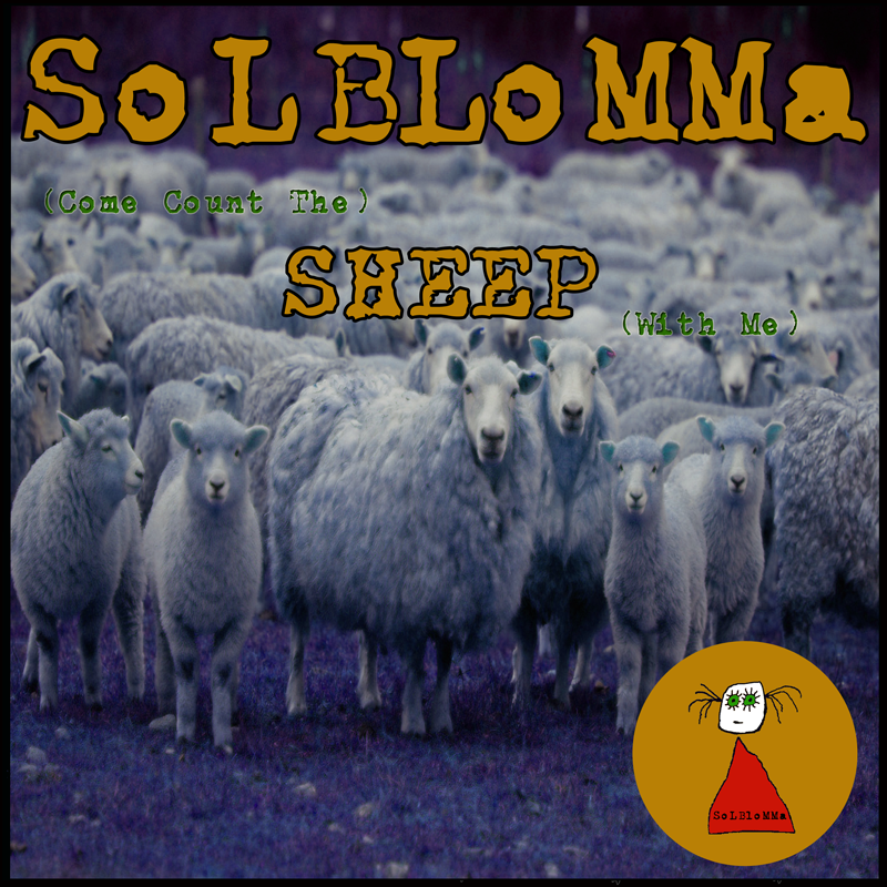 sheep_front800x800