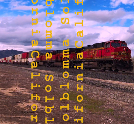 front cover - Solblomma - California - Single